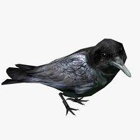 3D crow animal