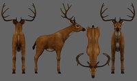 deer animal low-poly 3D