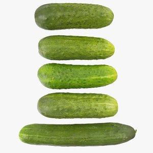 cucumbers 04-08 hi 3D