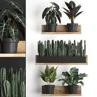 3D plants wall decor vertical model
