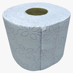 cleaned toilet paper 3D model