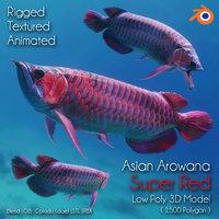3D asian arowana super red fish model