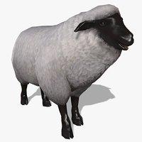 sheep animal 3D model