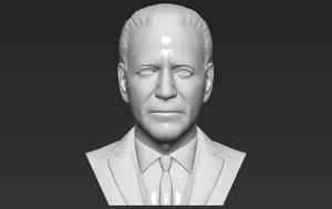 3D joe biden bust ready model