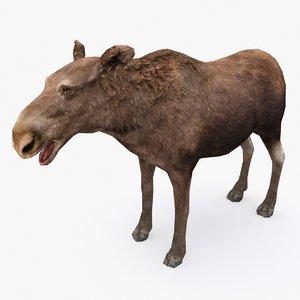 3D moose type 01