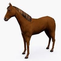 horse type 02 model