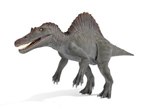 3D spinosaurus blender v-multi model
