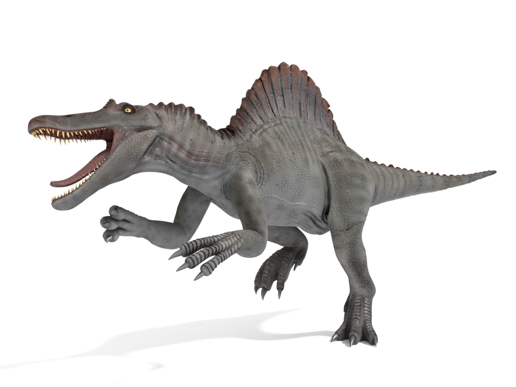 spinosaurus rigged 3D