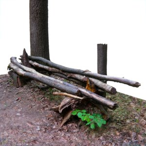 3D bench logs forest