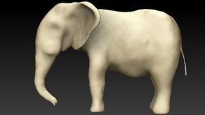 indian elephant base-mesh modeled model