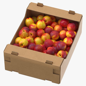 cardboard display box nectarines 3D model