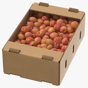 3D model cardboard display box apricots