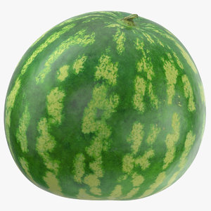 watermelon 04 3D model
