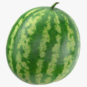 watermelon 05 3D model