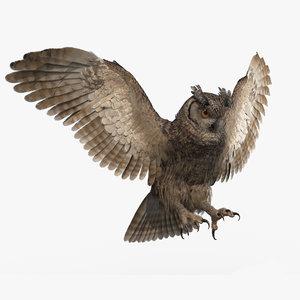 3D owl animations model