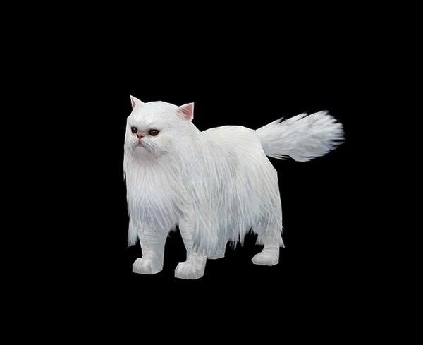 3D persian cat