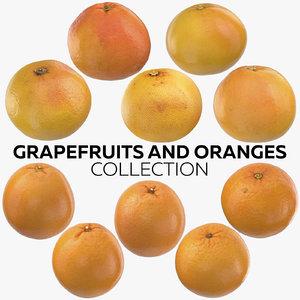 3D grapefruits oranges model