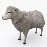 3D sheep type 01