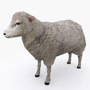 3D sheep type 01
