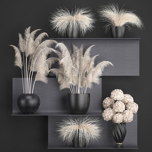 3D white dried flowers vases model