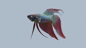 3D beta fish