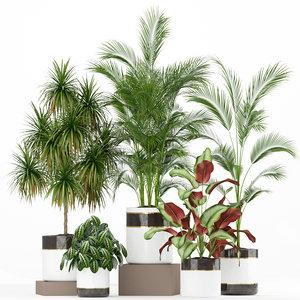 plants 188 3D model