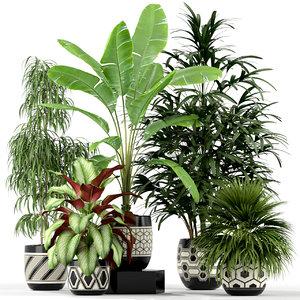 3D plants 189