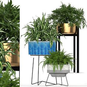 3D plants 191