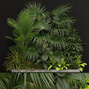 3D plants 197