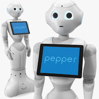 3D pepper robot standing pose
