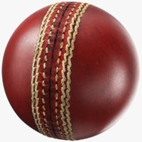 Generic Cricket Ball