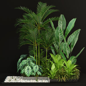 3D plants 198 model