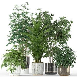3D plants 204