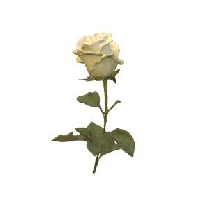 3D white rose flower