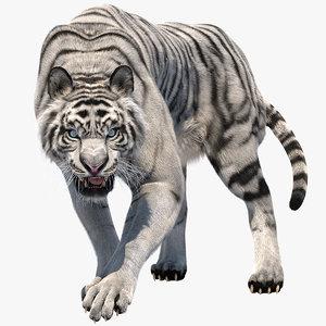 3D tiger fur white