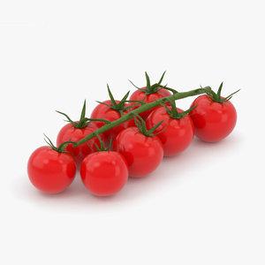 cherry tomato tomat 3D model