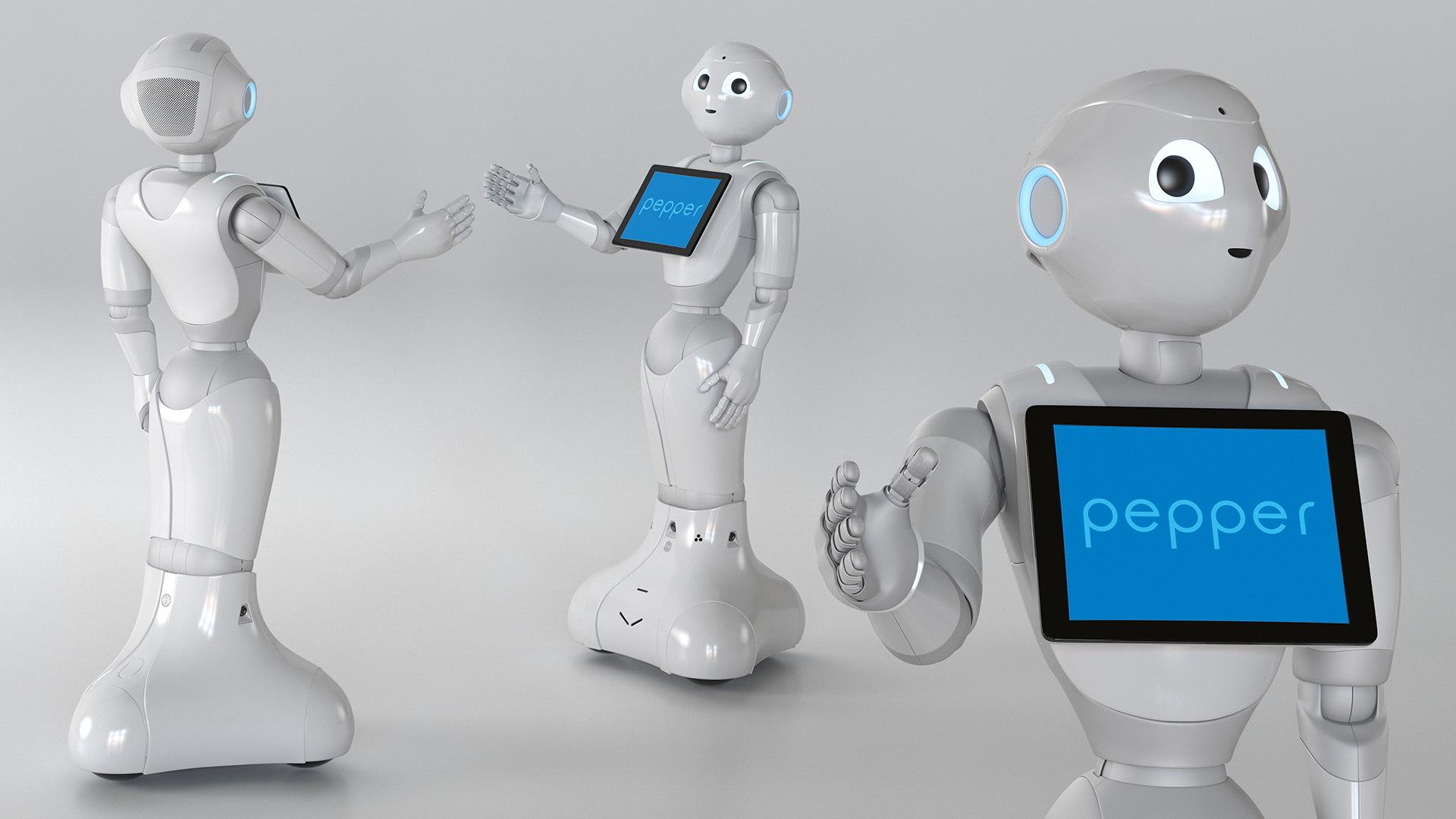 3D Information Display Pepper Robot