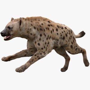 3D hyena fur animation model