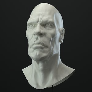 3D male character head