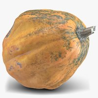 pumpkin 4 model