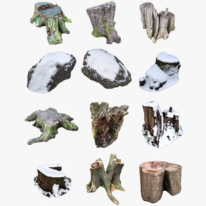 nature stumps rocks 3D model