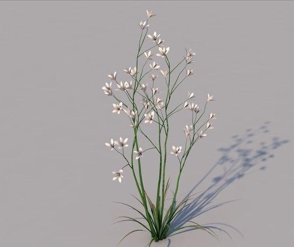 3D grass flower