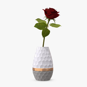 hexagon vase rose 3D model