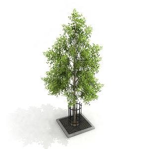 3D street tree planter model