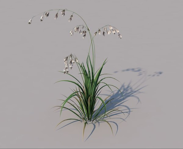 3D leaning meadow grass