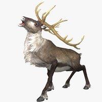 Reindeer Animated