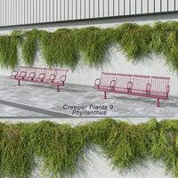 3D phyllanthus plants model