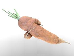 carrot 3D model