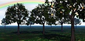 apple tree nature fruit 3D model