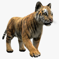 tiger fur baby 3D model